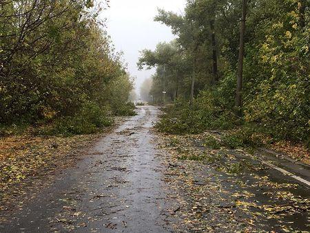 Негода у Донецьку: повалені дерева та зруйновані покрівлі (ФОТО) - фото 1