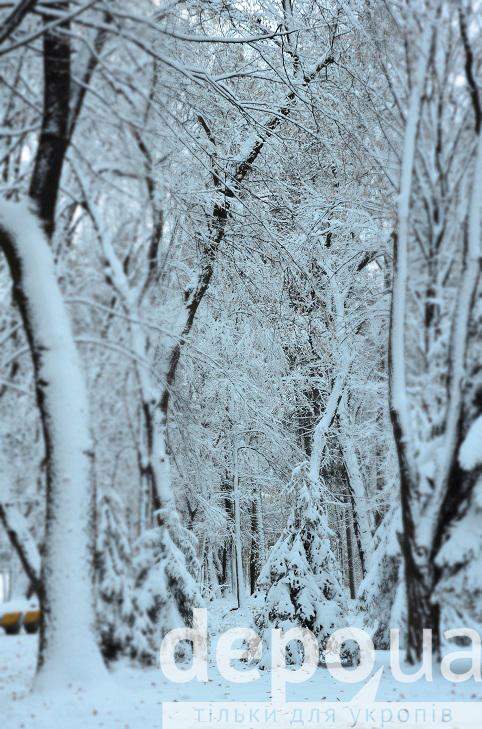 Прогулянка засніженою та казковою Вінницею (ФОТОРЕПОРТАЖ) - фото 28