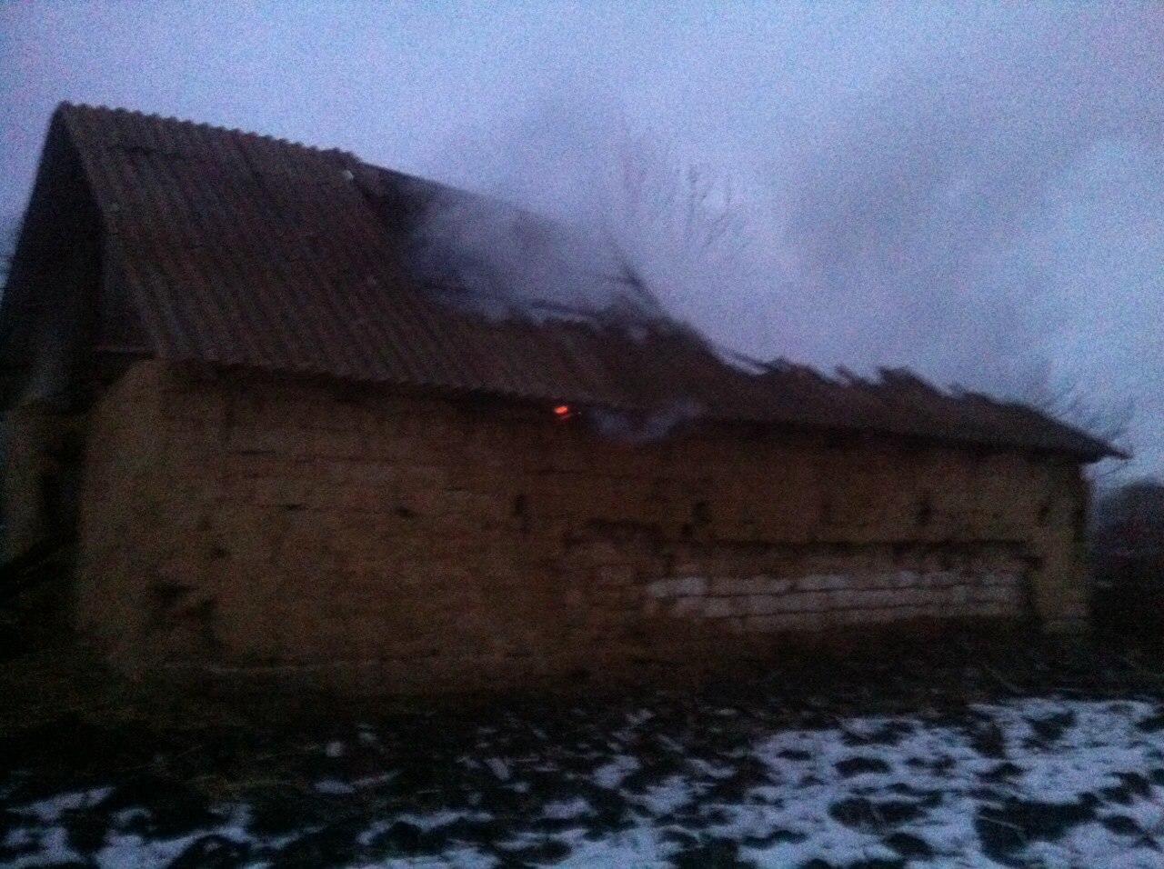 На Вінниччині в сільському дворі згоріли хата, хлів, корови і свині - фото 5