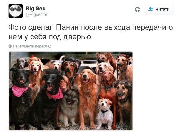 Панін та собака: соцмережі жорстоко тролять вподобання улюбленця Путіна - фото 3
