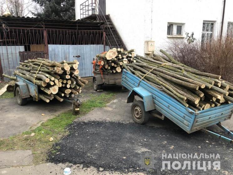 У лісосмузі біля села Кагарлик незаконно…