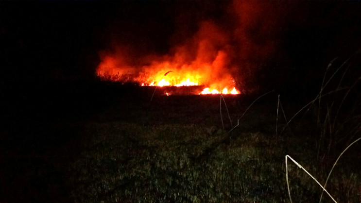 Під Полтавою пожежа охопила близько 12 г…
