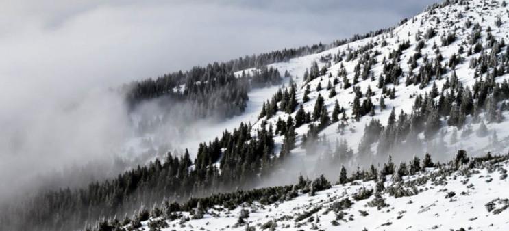 На високогір'ї Карпат очікується снігу д…