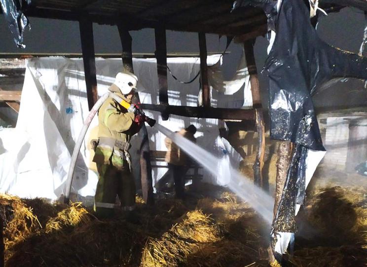 На Полтавщині пожежа знищила господарчий…