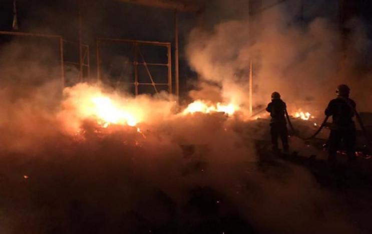 В Киеве спасатели побороли пожар на терр…