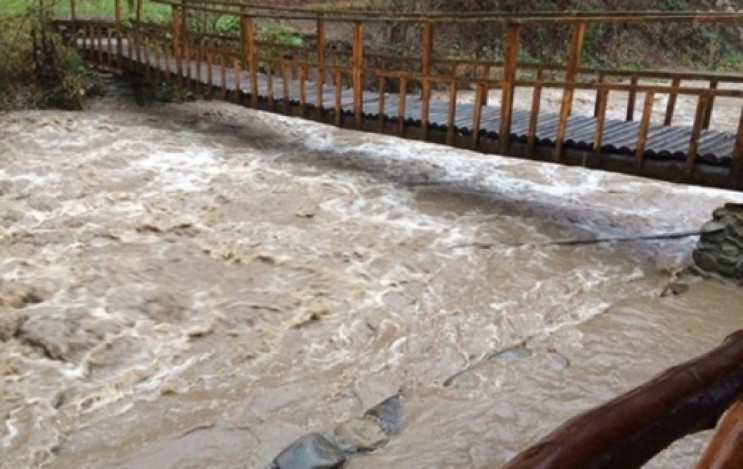 На Закарпатті вода в деяких річках вийде…