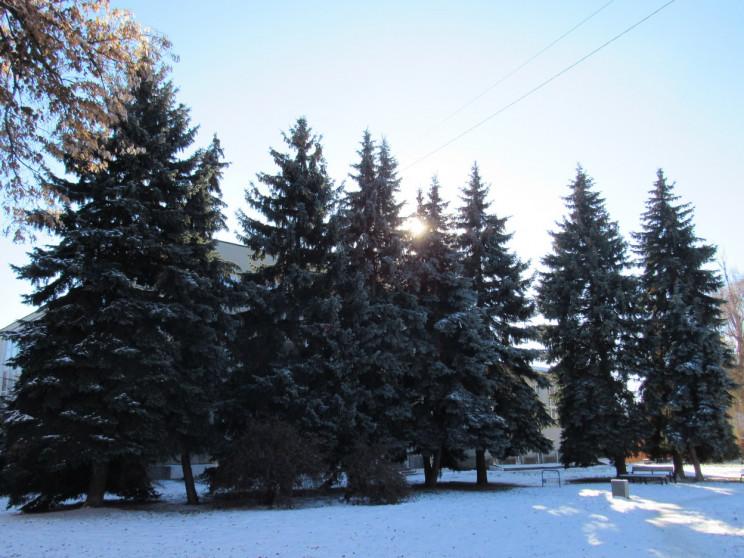 Хмари і мряка: 6 лютого у Черкасах засні…