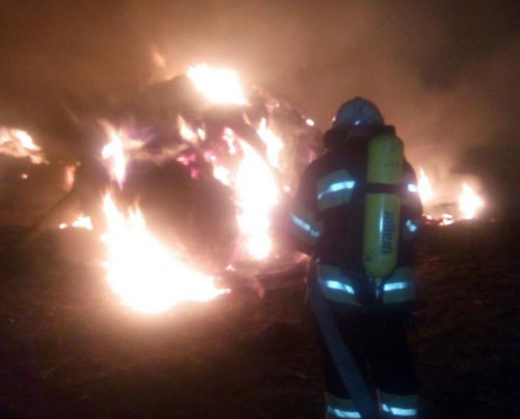 В Александрии в ночном пожаре нашли тело…