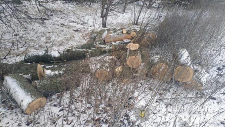 """На Дніпропетровщині бракон'єри """"полюють""""…"""