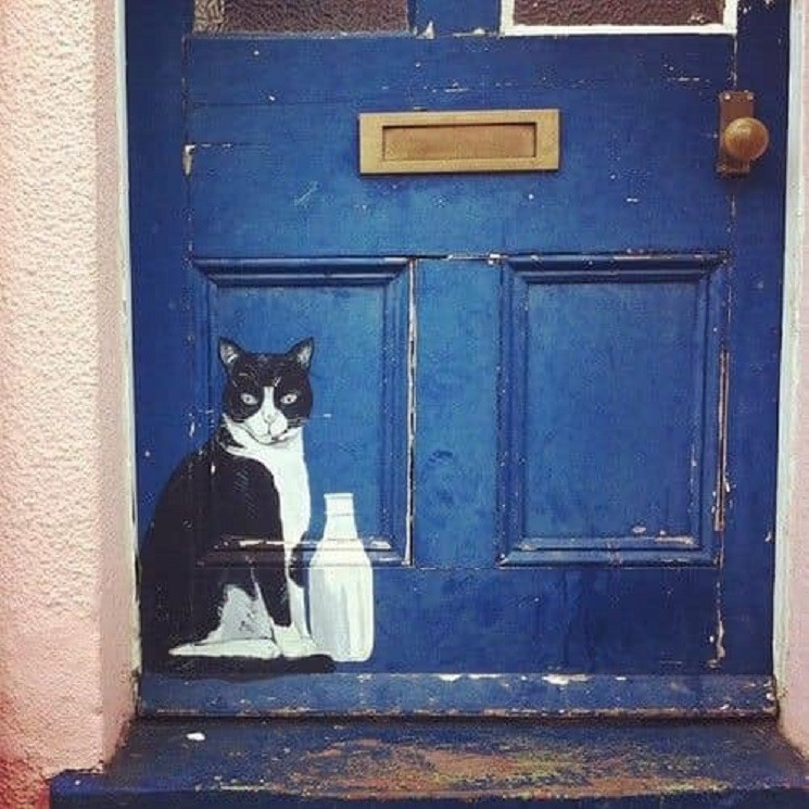 В Днепре показали двери домов с изумител…