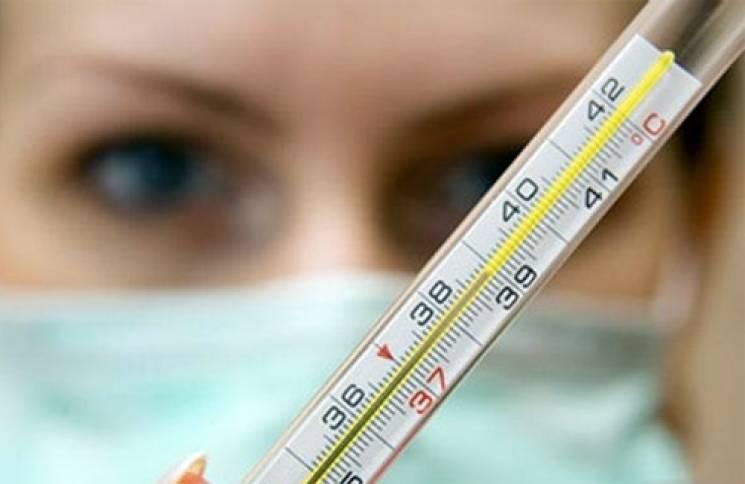 На Кропивниччині підтвердили грип у шіст…