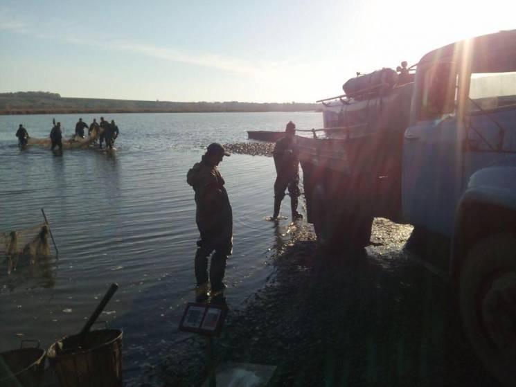 На Дніпропетровщині поліція розслідує за…