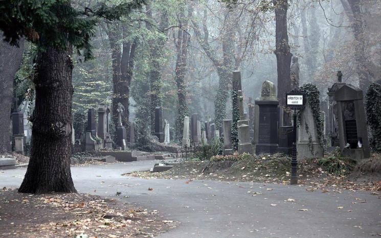 Львів'ян кличуть на громадські слухання…