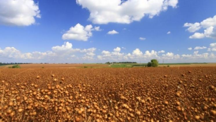 Герега збільшує свій земельний банк майж…
