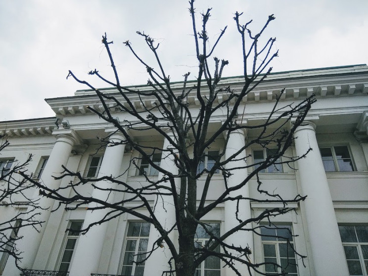 Зима здає позиції: Якою 15 лютого буде п…