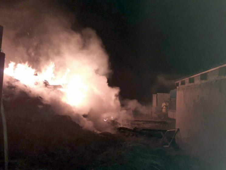 У закарпатца на дворе сгорело 10 тонн се…