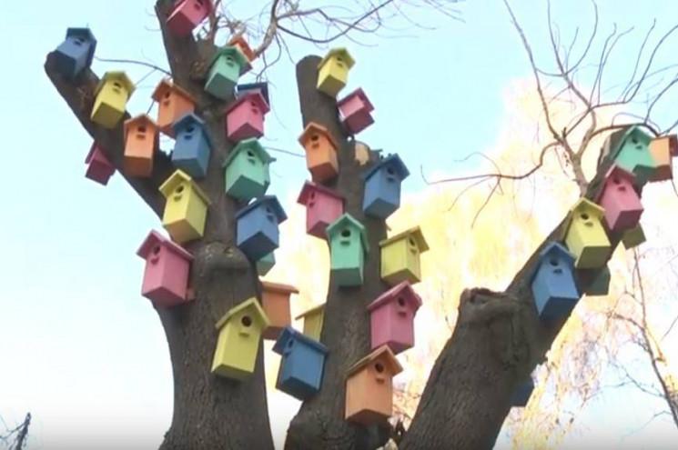 Вінницькі школярі створили різнокольоров…