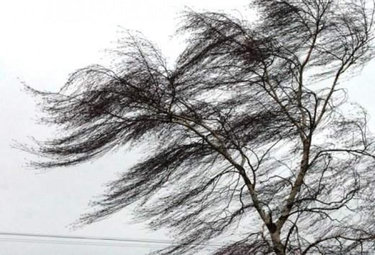 На Кропивнитчине предупреждают о дожде и…