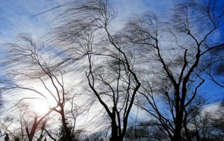 Штормовий поривчастий вітер все ще вирув…