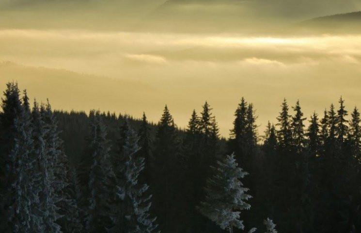 Закарпатье: Прогноз погоды на 26 февраля…