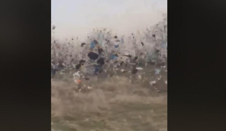 На Миколаївщині вітер здійняв у повітря…