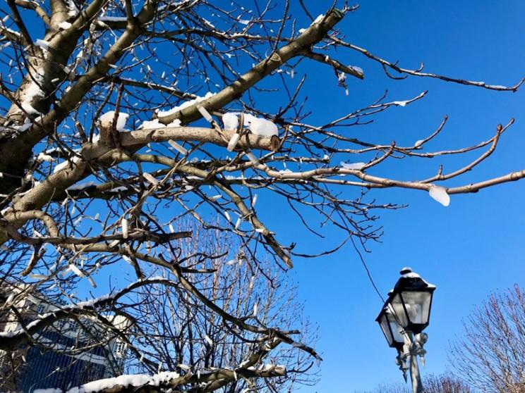 Хмари не зникнуть: 26 лютого у Черкасах…