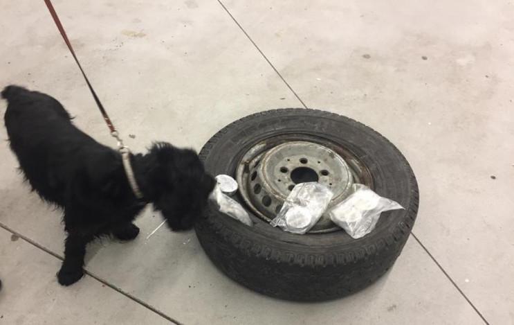 На Галицькій митниці собака Боня допоміг…