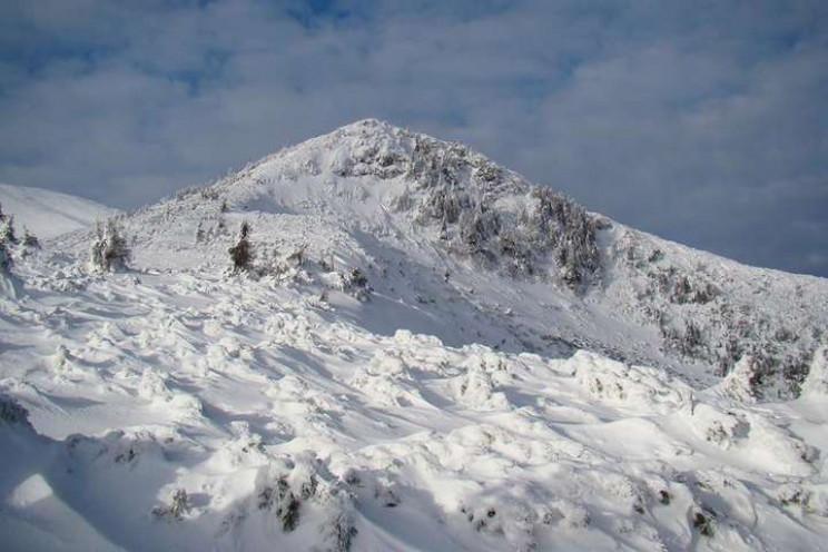 У горах Прикарпаття зберігається значна…