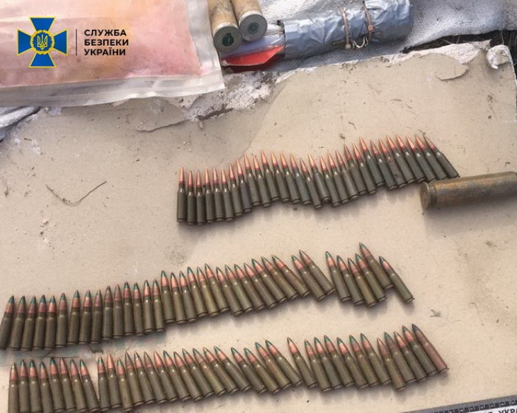 На Луганщині посібниця терористів облашт…