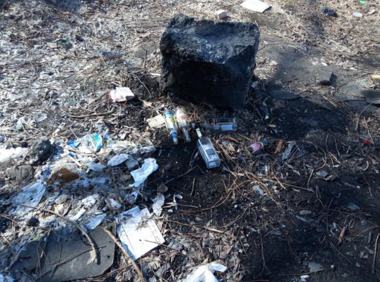 Кияни в шоці від навали сміття, яке зали…