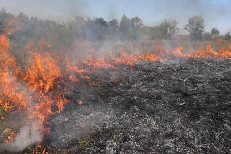 На Тернопільщині знову горять екосистеми…