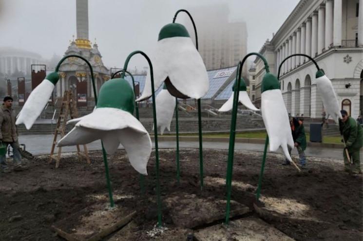 """На Майдане """"выросли"""" гигантские подснежн…"""