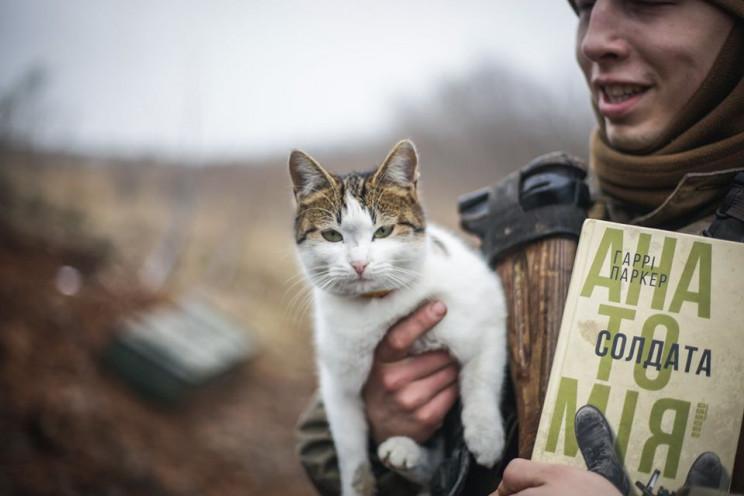За що котам в ООС треба поставити пам'ят…
