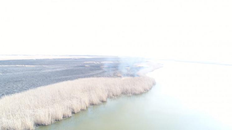 У Темрюкському районі загорівся лиман…