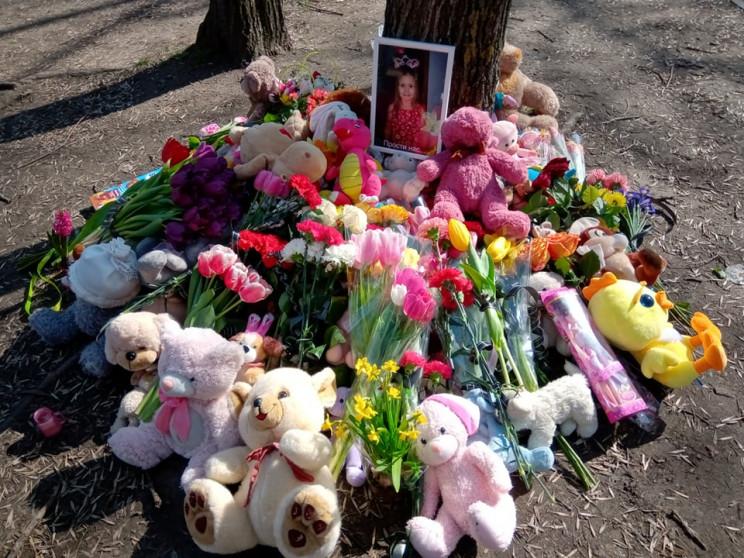 Смертельний ведмідь: Хто винен у загибел…