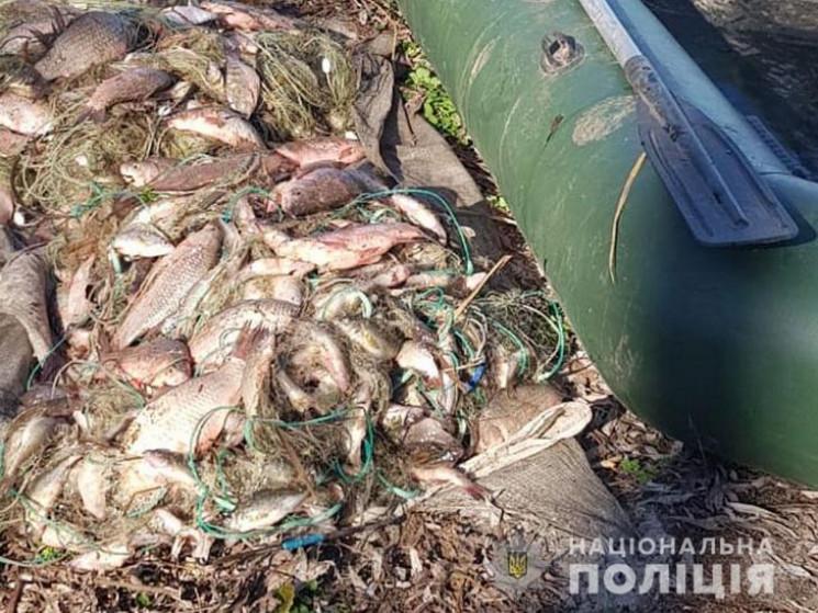 Поліцейські Полтавщини викрили браконьєр…
