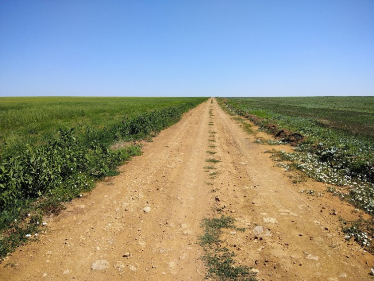 Прокуратура Полтавщины требует у фермеро…