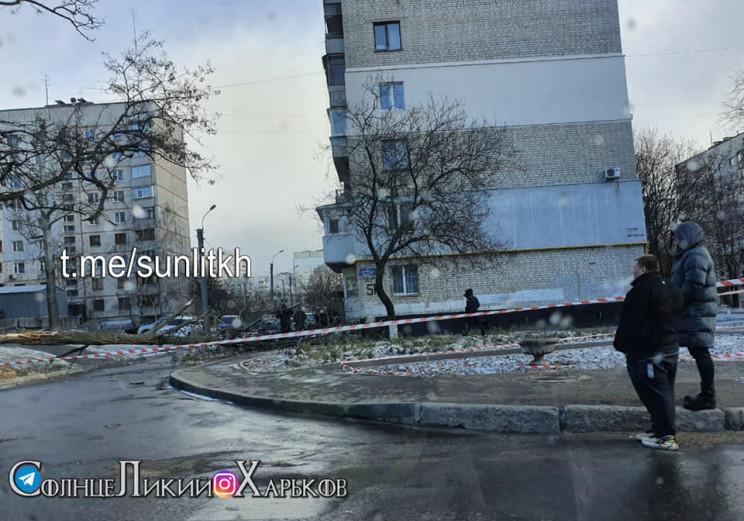 В Харькове дерево упало на мужчину…