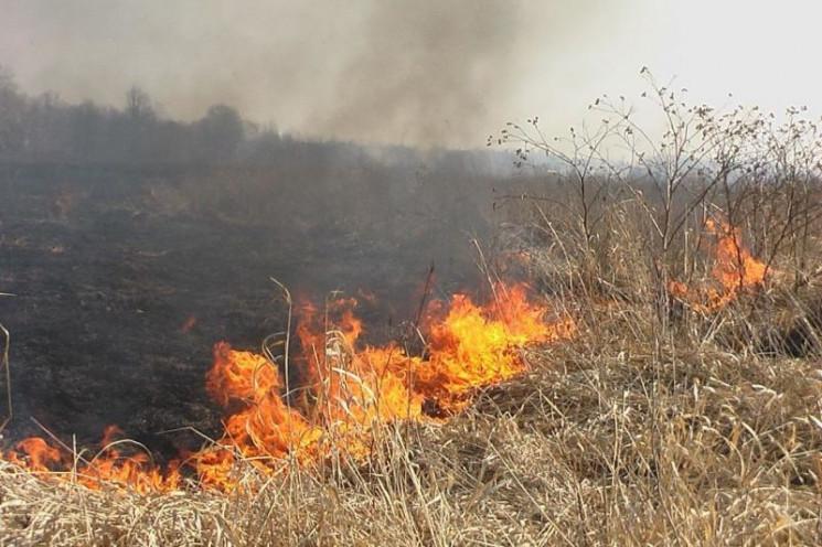 За добу на Тернопільщині сталося 19 поже…