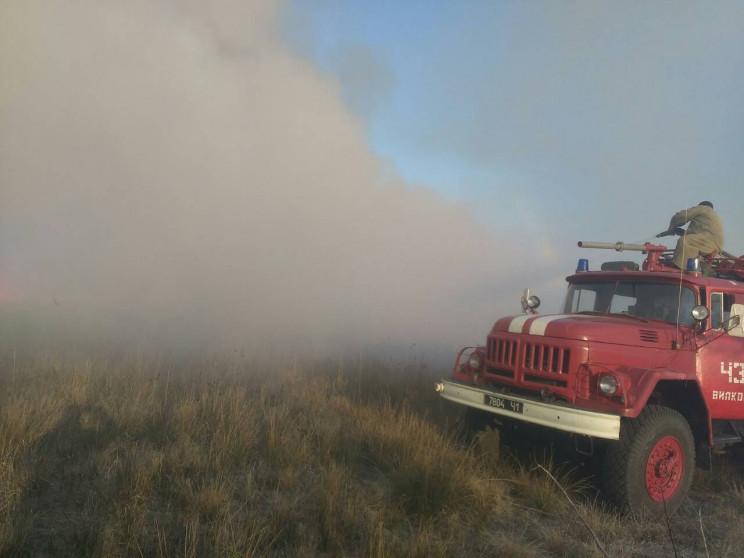 В Одесской области горит лес и свалка…