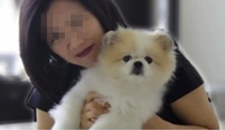 Від коронавірусу помер перший собака…