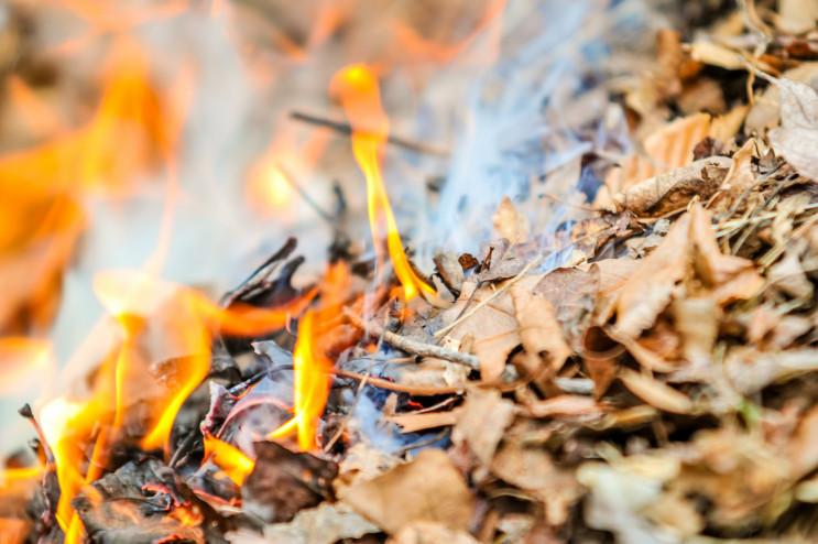 Спалюючи листя, згоріла жінка на Тернопі…