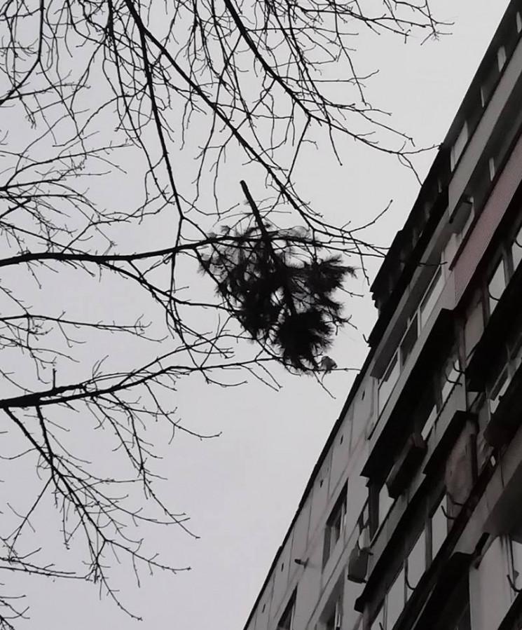 Навіть не травень: У Новомосковську жбур…