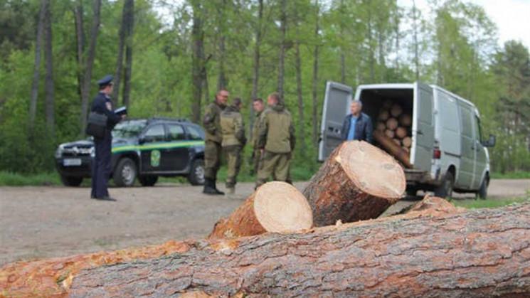 """На Кропивниччині судитимуть """"чорного ліс…"""