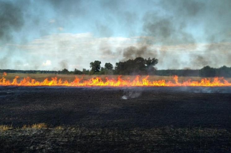 Вогнем охоплено понад 27 гектарів: Кияна…