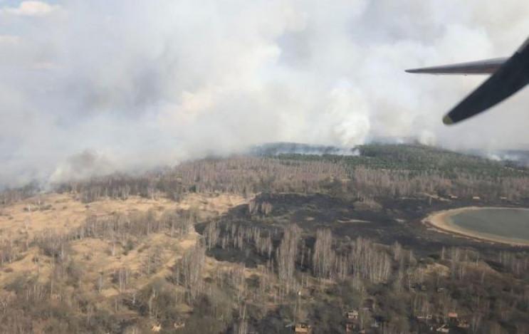 У Чорнобильській зоні горить ліс…