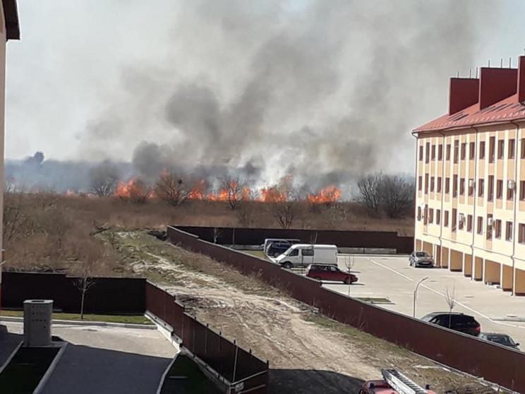Біля Львова спалахнула пожежа (ФОТО)…