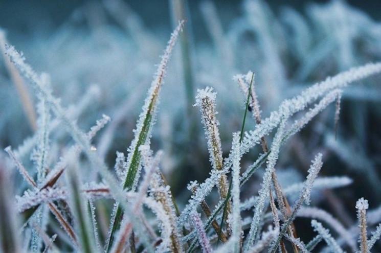 На Харьковщину вернутся заморозки…