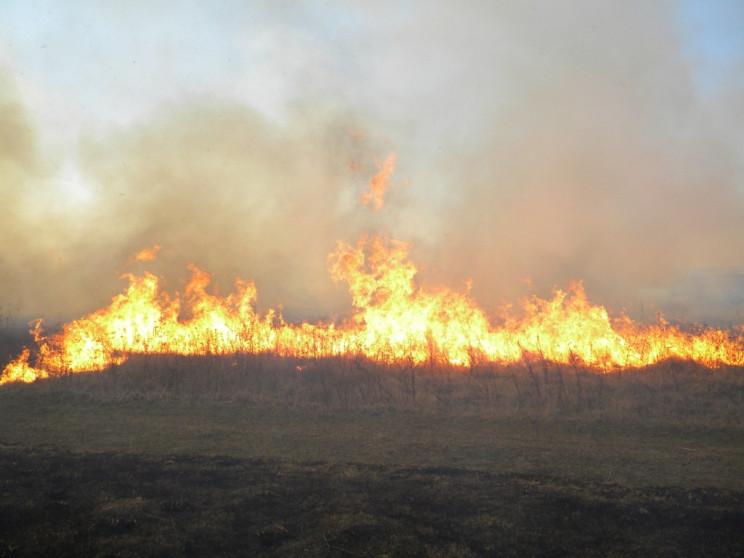На Чернігівщині, спалюючи сміття, загину…