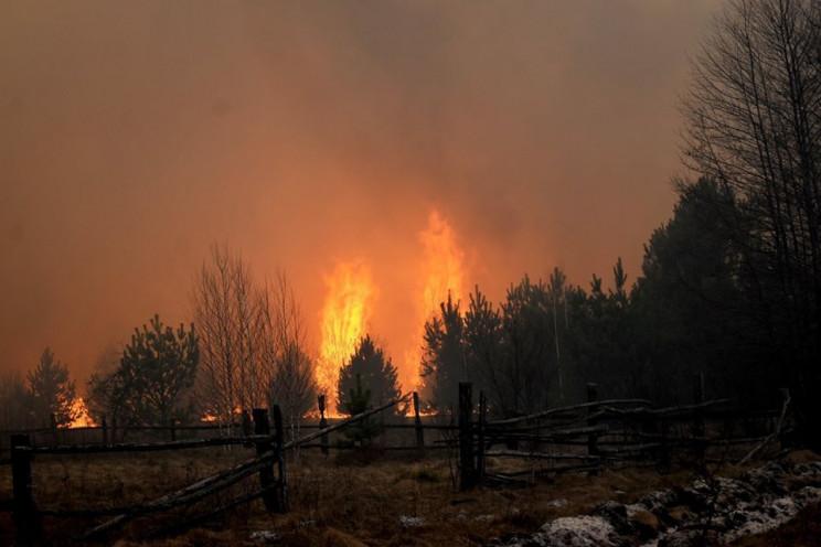 На Житомирщине горят села…